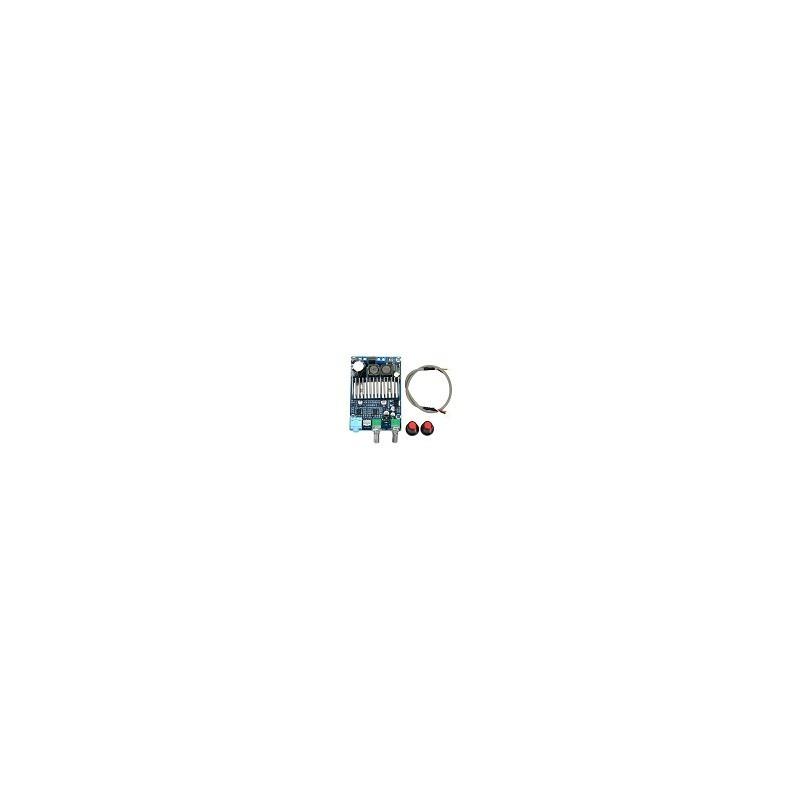 Amplificador Subwoofer Salida de bajos TPA3116 100W