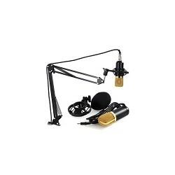 Microfono Profesional de Condensador BM700 NB-35 3.5mm